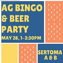 Bingo & Beer Party
