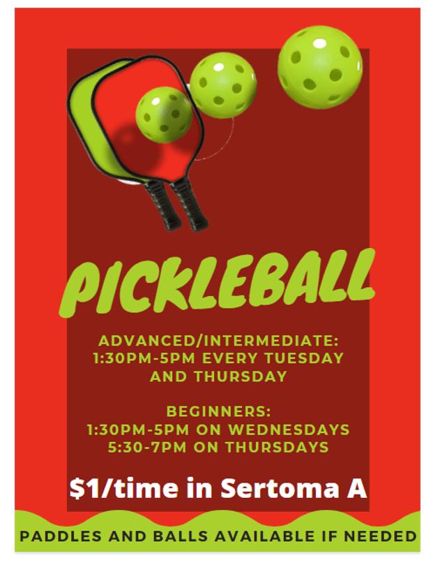 Pickleball - Advanced/Intermediate